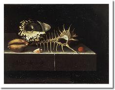 Adriaen Coorte - Still Life with Shells, 1698