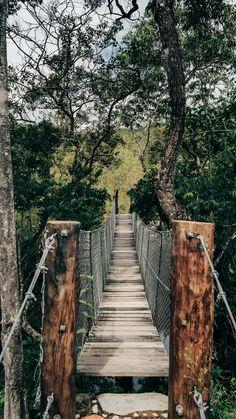 Fundo de tela de uma ponte pênsil na trilha do Vale! Essa trilha faz parte do passeio pela cachoeira do Abade, em Pirenópolis-GO. Conheça mais desse lindo lugar no link! Clique para ver.  #background #pirenopolis