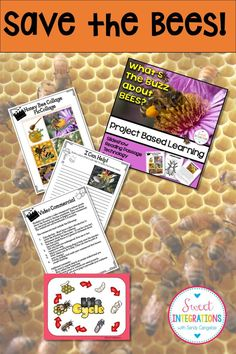 "PROJECT BASED LEARNING SCIENCE: Save the Honey Bees PowerPoint, STEM, Bee Hotel - Use this 50+ page resource with your upper elementary 3rd, 4th, or 5th grade classroom or home school students. students will research bees, interview bee keepers and come up with ideas of saving the population. They can even host a ""Bee Sweet Tasting Party."" STEM can be incorporated into the unit when students build their Bee Hotel. Covers science, writing, research, technology {third, fourth, fifth, graders}"