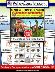 An engaging dinosaur theme to practice sentence comprehension! A learning resource for ESY, autism, Special Education, reading resource, homeschool, tutoring, and summer practice! Autism Classroom, Special Education Classroom, Classroom Resources, Reading Resources, Reading Strategies, Reading Comprehension, Autism Causes, Dinosaur Facts, Special Needs Students