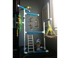 Tabletop or Cagetop PVC Bird Gym Play Stand with by FeatheredFunn Budgies, Parrots, Cockatiel, Bird Play Gym, Green Wing Macaw, Conure Bird, Senegal Parrot, Parrot Toys, Budgie Toys