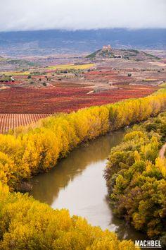 Meandro del río Ebro Viñedos en otoño La Rioja España by machbel