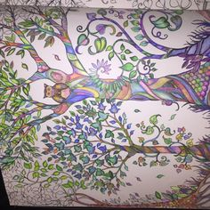 Johanna Basford   Picture by dagan manahl   Colouring Gallery