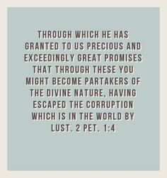 Through which He has granted to us precious and exceedingly great promises that through these you might become partakers of the divine nature, having escaped the corruption which is in the world by lust. Prayer Scriptures, Bible Verses Quotes, Christian Life, Christian Quotes, 2nd Peter, Scripture Journal, Pet 1, Scripture Pictures, Being In The World