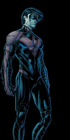 Nightwing by Brett Booth