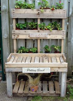 Strawberry Pallet mounted on the fence & my recycled pallet potting bench.