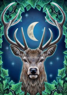 Stag artwork by Lisa Parker part of the magical collection. To find more visit lisa Parker fan page for free colouring pages and lots of magical news Mini Mundo, Witchy Wallpaper, Lisa Parker, Peacock Wall Art, Deer Art, Beautiful Fantasy Art, Celtic Art, Wicca, Spirit Animal