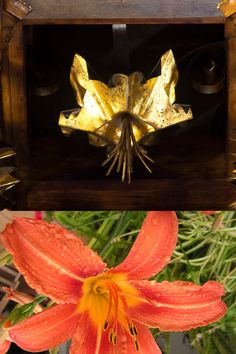 El lliri és una flor per ostenta, la regalem per a la gent ens tingui presents. Aquest lliri el trobem a la cabota del sostre de la sala de visites, un dels enteixinats més espectaculars de l'edifici.  A dalt: Ramon Manent/Diputació de Barcelona A baix: Blogufotos: La Diana Wreaths, Fall, Home Decor, Spring, Autumn, Decoration Home, Door Wreaths, Fall Season, Room Decor