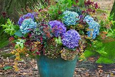 Bring colour into your home this autumn with heavenly hydrangeas