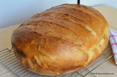 Paine de casa reteta simpla pas cu pas care nu da gres. Paine pufoasa cu coaja subtire si rumena si cu miez moale si aromat. Sunt multe retete de paine insa Cooking Bread, Bread Baking, Bread Recipes, Cake Recipes, Cooking Recipes, Romanian Food, Romanian Recipes, Home Food, Dough Recipe