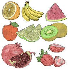 Jitesh Patel | Illustrator | Central Illustration Agency #line #handdrawn #painterly #bold #illustration #fine #detail #fruit #food