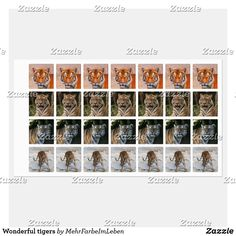 Shop Wonderful tigers labels created by MehrFarbeImLeben. Clothing Labels, Tigers, Animal, Clothing Tags, Animals, Animales, Animaux, Animais, Big Cats