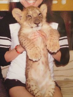 mini lion!!!!
