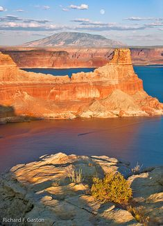 ~ Lake Powell ~ Utah/Arizona.  Lake Powell is a reservoir on the Colorado River, straddling the border between Utah and Arizona (most of it, along with Rainbow Bridge, is in Utah).