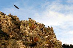 Fotos de: Cáceres - Parque Nacional de Monfragüe
