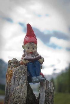 "In, 'The Origin of the Gnomes' it says, ""and it came to pass that Thor begat More who begat S'more and so on sons and sons.' They dislike being organized, straight roads, and pencil sharpeners. They talk with trees and live in them. It is not a long book."
