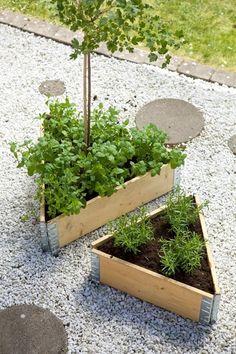Gravel Garden, Garden Plants, Dream Garden, Home And Garden, Pergola, Wooden Garden Planters, Allotment Gardening, Garden Design Plans, Garden Club