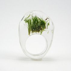 Moss Ring, Unique Clear and Black Resin Ring with Natural Moss by Sisicata
