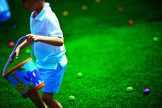 Family Traditions: How to Set Up an Easter Egg Hunt