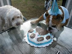 My b-day party