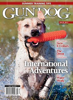 Mark L Atwater Photography Hunting Magazines, E Magazine, Training Tips, Africa, Adventure, Dogs, Photography, Fotografie, Photograph