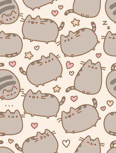 Gatos gordos! :3