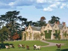 Hotel Endsleigh Tavistock - Devon - United Kingdom