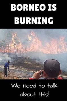 Borneo Is Burning - We Need To Talk About This! This post is about the Southeast Asian haze in 2015, but this is something that happens every year due to the world's demand for palm oil. We must address this issue.