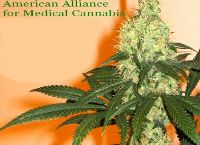 American Alliance for Medical Cannabis