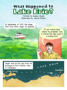 This Comic Strip Explains Why We Could See More Disasters Like Toledo's Toxic Algae Bloom