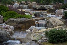 http://www.aquascapedesigns.com/index.php/water-garden-portfolio/showcaseprojects/87-sugar-grove