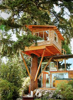 Tree House in the Pine – http://treehouselove.com/post/68064546244/tree-house-in-the-pine
