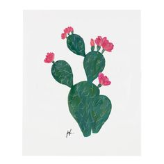 Flowering Cacti V Print