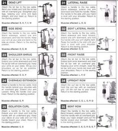 Weider 8530 Exercise Chart With Images Gym Workout Chart, Gym Workout Tips, Workout Schedule, Exercise Chart, No Equipment Workout, Daily Workouts, Smith Machine Workout, Workout Machines, Exercise Machine
