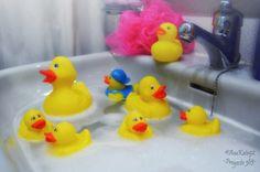Proyecto 365 de @Ana G. Kato: 032 - ¡Al agua, patos!