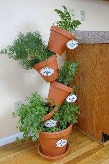 I will be growing my herbs on my deck with this arrangement