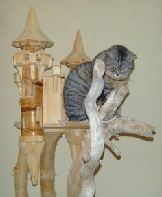 www.domusfelis.com # special playzone for cats # luxury cat castle # cat tower # cat tree