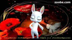 Schenk mir keine Rosen, wenn ich Liebe brauch...;) Schlager, Love, Zoobe...