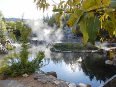 Strawberry Park Hot Springs outside Steamboat, CO. An amazing hot spring nestled in a mountain valley outside of the popular ski town. Great anytime of year. I went several summers ago.
