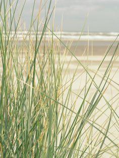 De duinen...de zee. Zo mooi!
