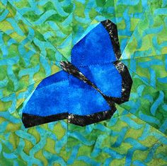 silver linings quilting pattern blue morpho butterfly Morpho Butterfly, Blue Morpho, Paper Piecing Patterns, Quilt Patterns, Butterfly Quilt Pattern, Sampler Quilts, Animal Quilts, Foundation Paper Piecing, Quilting Designs