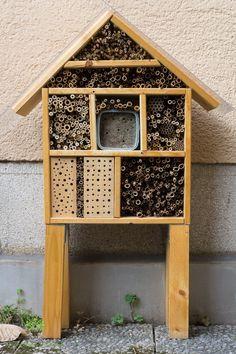 die 392 besten bilder von insektenhotel bauen in 2019 bees bug hotel und garden bugs. Black Bedroom Furniture Sets. Home Design Ideas