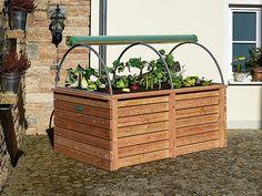 Types Of Herbs, Garden Bench Plans, Plants, Hydrangea Care, Vegetable Garden Planning, Citrus Garden, Garden Cloche, Portable Garden, Vegetable Garden Raised Beds