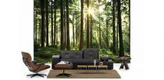 Sunbeam through Trees skog - Fototapet & Tapet - Photowall Lit Wallpaper, Custom Wallpaper, Photo Wallpaper, Forest Wallpaper, Forest Mural, Forest Theme, Tree Wall Murals, Forest Light, Magic Forest