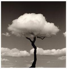 """una fábrica de nubes: """"Chema Madoz"""" photography"""