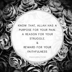 Know that Allah has a purpose for your pain a reason for your struggle and reward for your faithfulness. Quran Verses, Quran Quotes, Hindi Quotes, Islamic Qoutes, Muslim Quotes, Islam Religion, True Religion, Learn Arabic Online, All About Islam