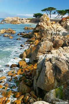 Monterey Bay, #California A beautiful place to visit. We got married there! Would love to move back actually!
