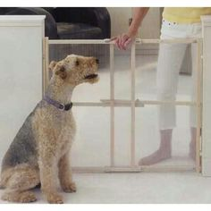 """North States Clear View Pet Gate Xt 26"""" - 42"""" X 32"""""""