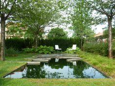 Awesome natural pool. Love natural pools.