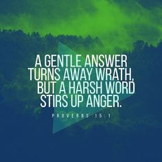 Proverbs A soft and gentle and thoughtful answer turns away wrath, But harsh and painful and careless words stir up anger. The Words, Harsh Words, Bible Scriptures, Bible Quotes, Scripture Memorization, Scripture Pictures, Bible Prayers, Biblical Quotes, Scripture Art